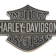 Pins Harley.